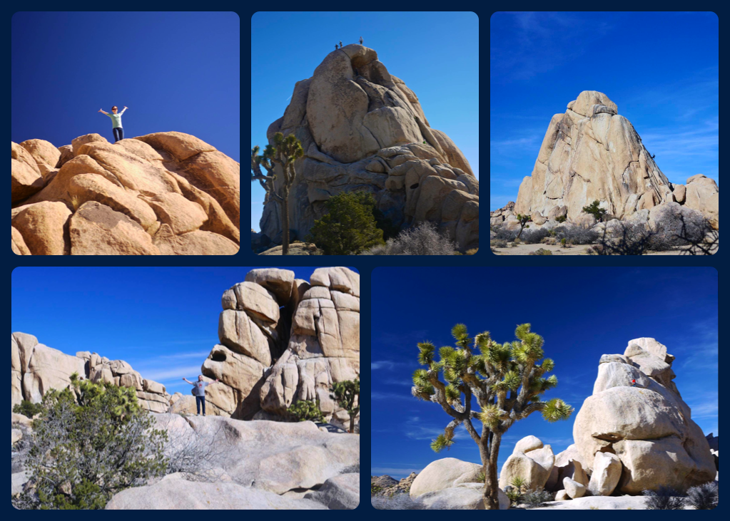 Rock Climbers - one in every picture...