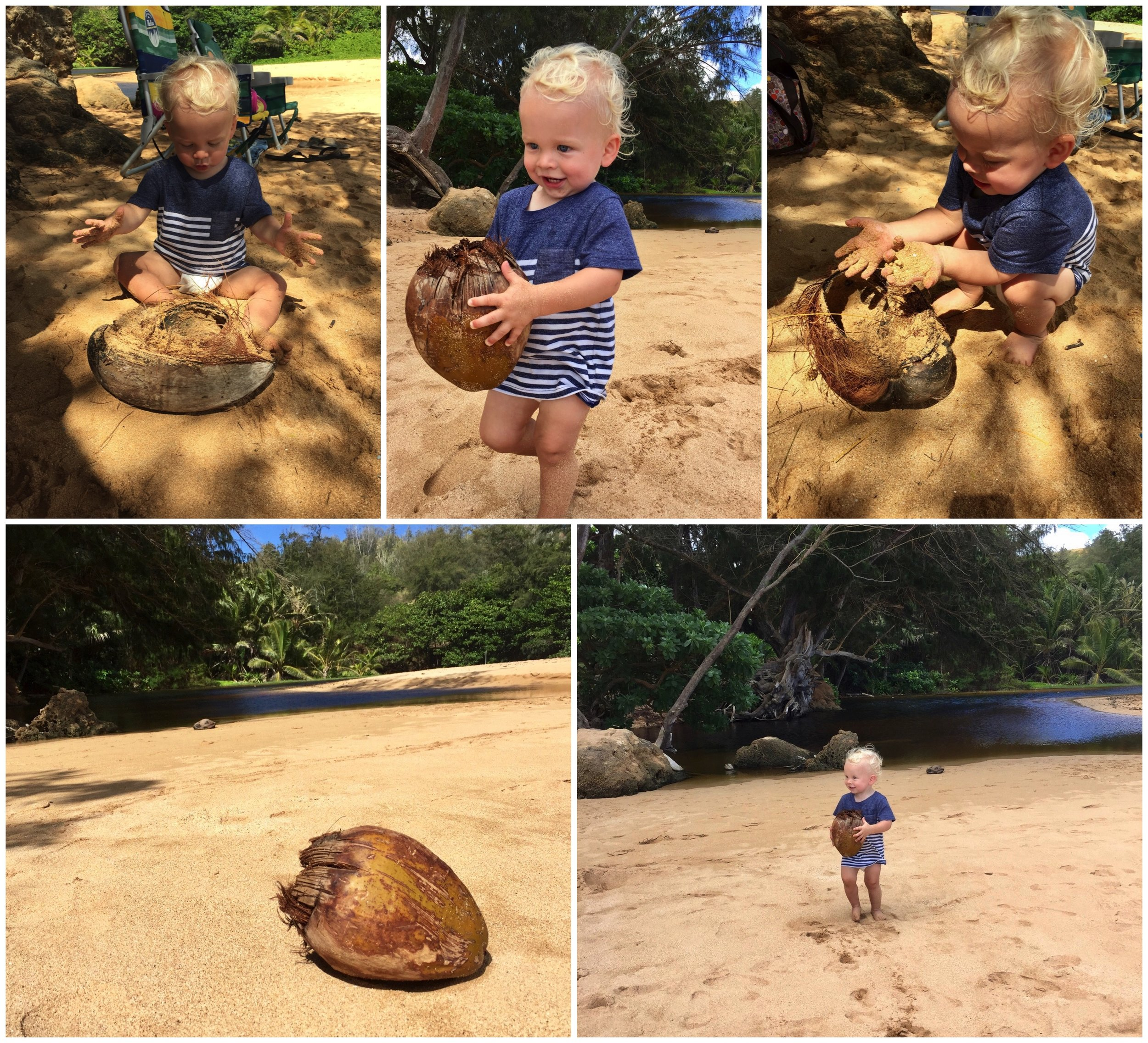 Caleb discovers coconuts at Molaa Beach