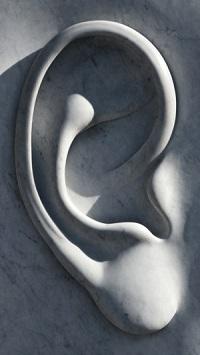 What Causes Tinnitus?