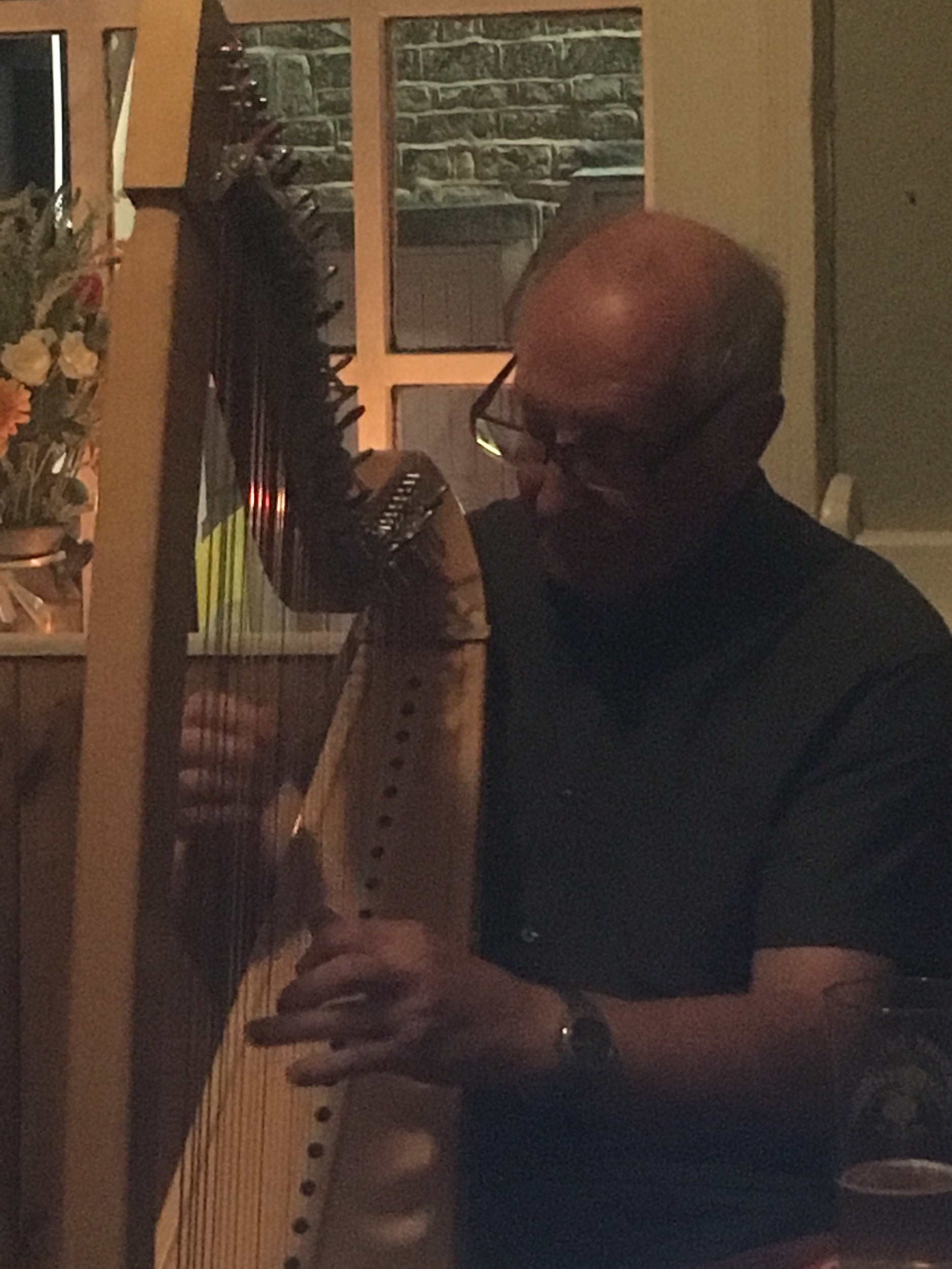 Frank The Harp
