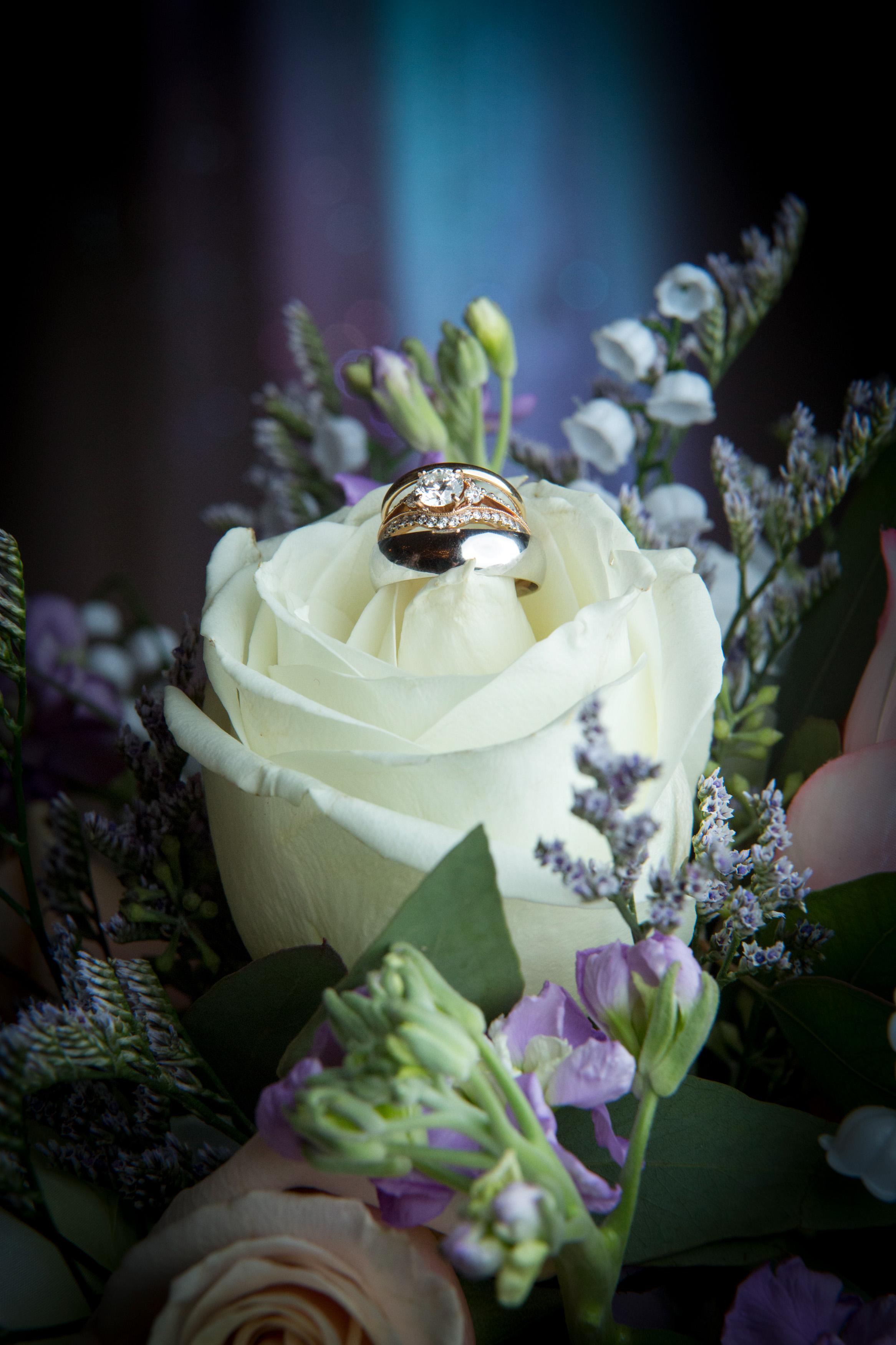 Thoele Wedding 5D 1152.jpg