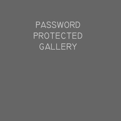 Password protected gallery