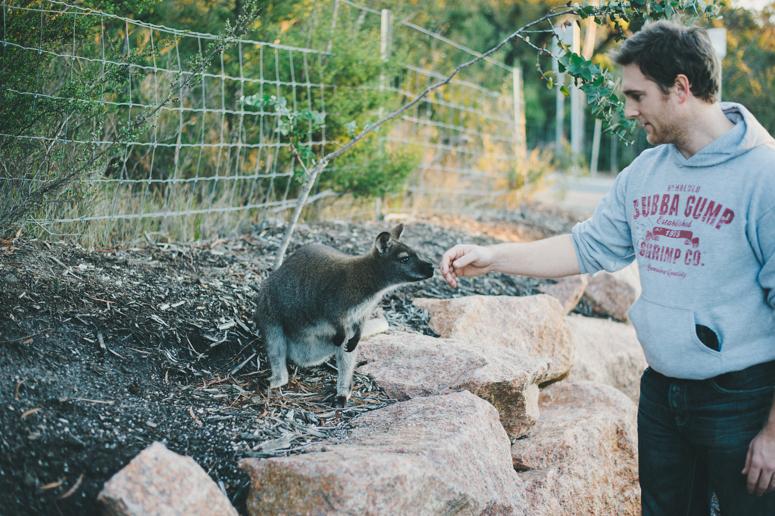 Tasmania 2013 -177.jpg