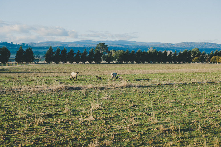 Tasmania 2013 -199.jpg