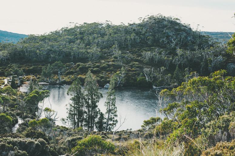 Tasmania 2013 -227.jpg