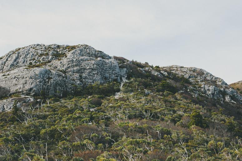 Tasmania 2013 -230.jpg
