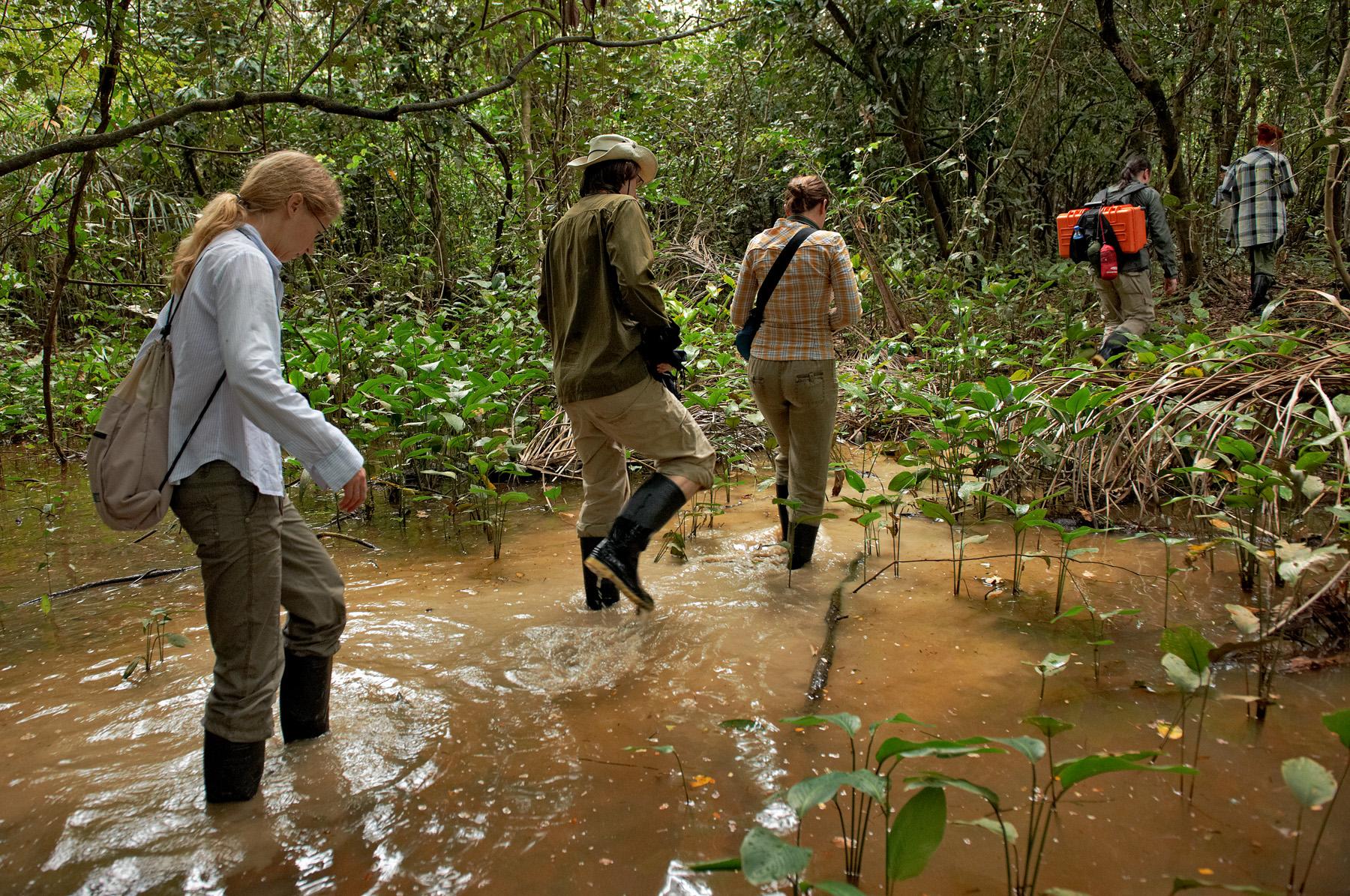 Džunglimatkal Kolumbia Amazonases 2011. a. Foto: Kaupo Kikkas