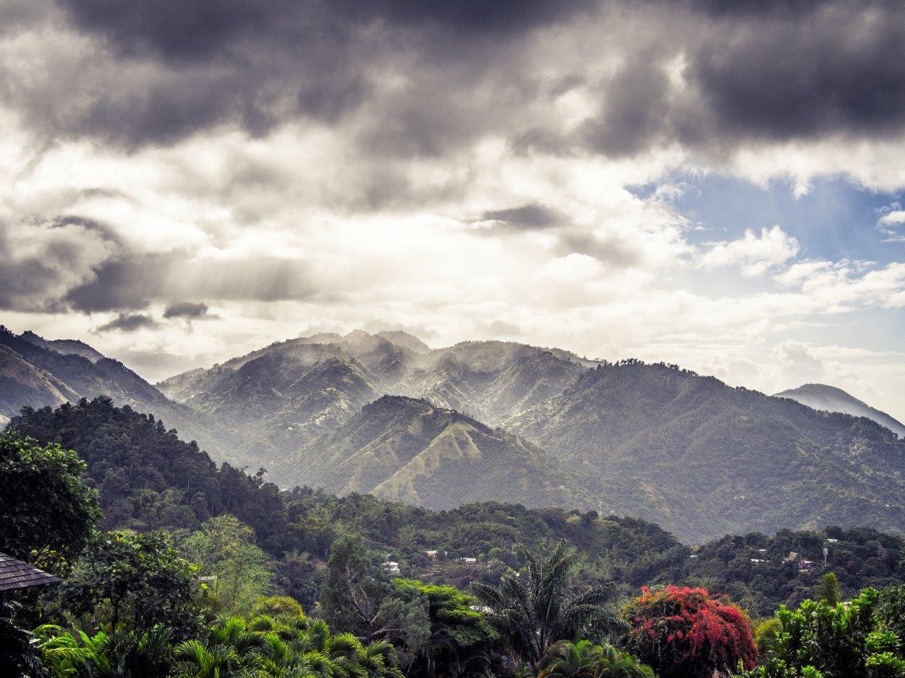 Appleton Estate landscape, Jamaica. Foto: Tarrvi Laamann