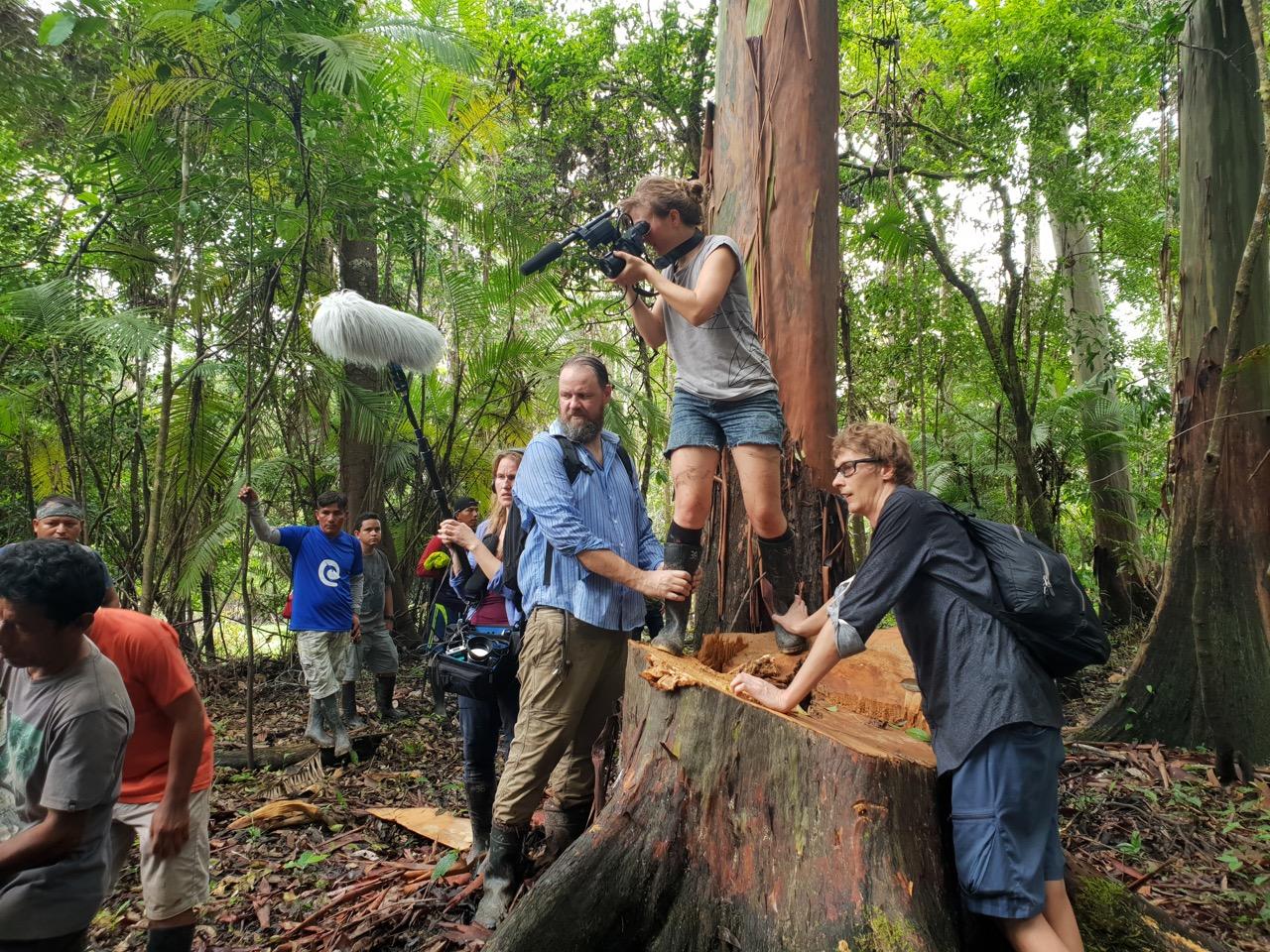 Kaamera ees on metsavargad! Foto: Johan Kullerkup /Amazonas Reisid
