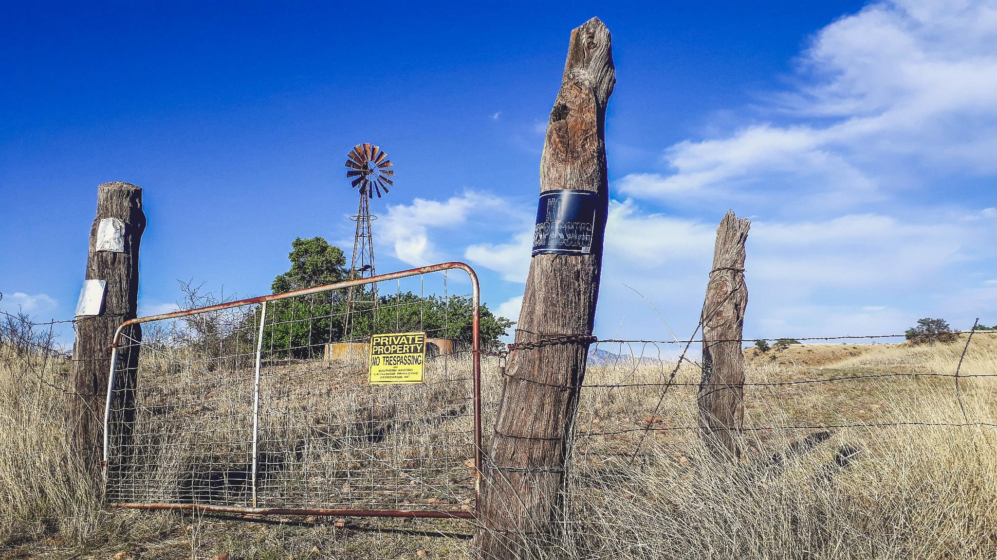 Texase klassika - kääksuv tuulepump ja heinapallid. Foto: Väino Laisaar