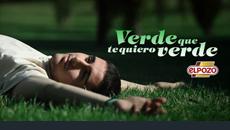 2009/ ElPozo. Verde.