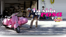 2008/ ElPozo. La vida en rosa.
