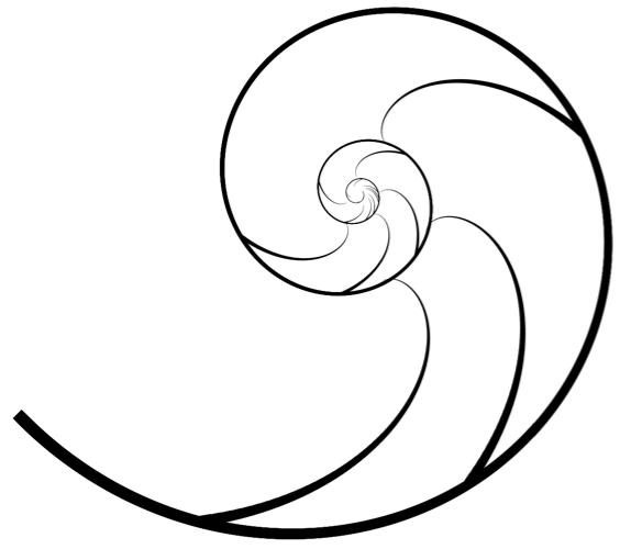Nautilus_Shell.png