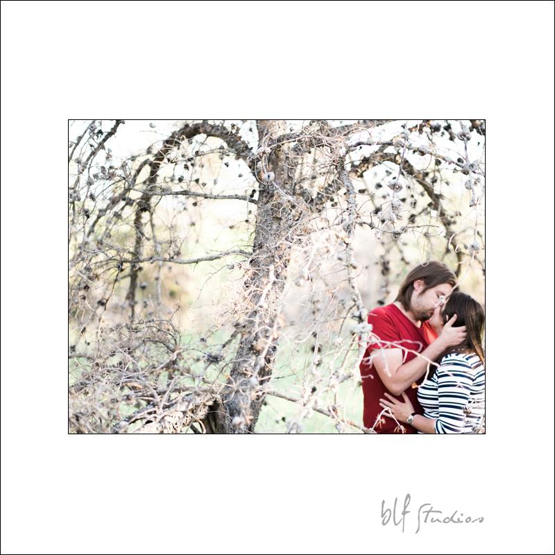 Birds Hill Park Wedding Photographer (5).jpg