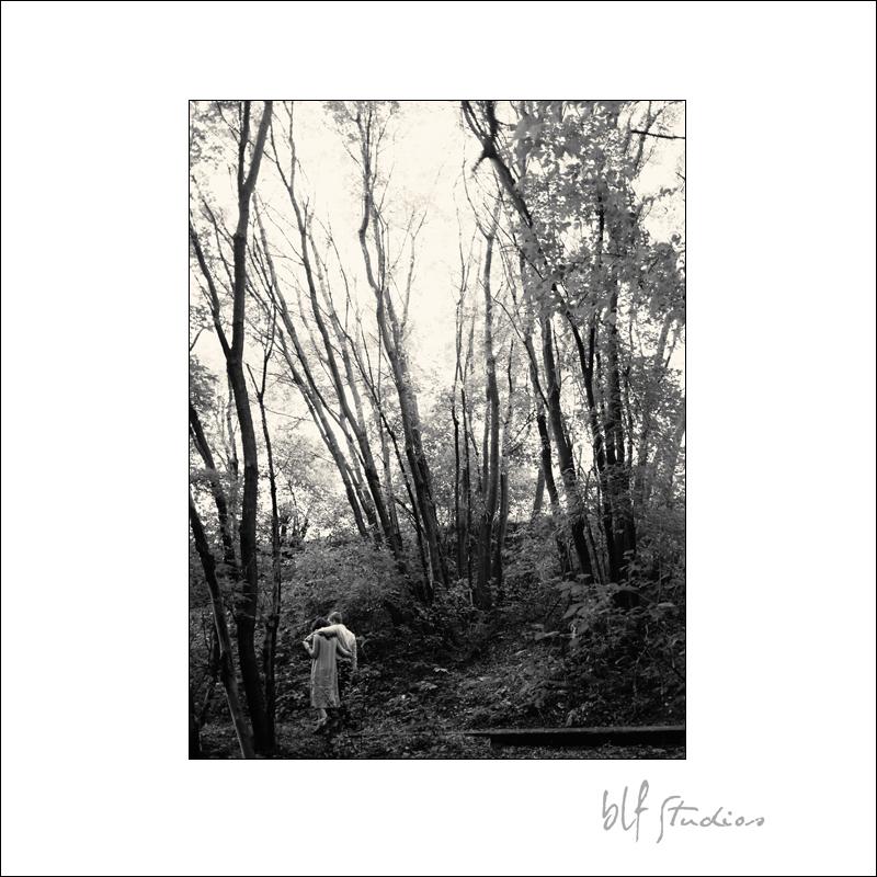 A walk in the woods.jpg