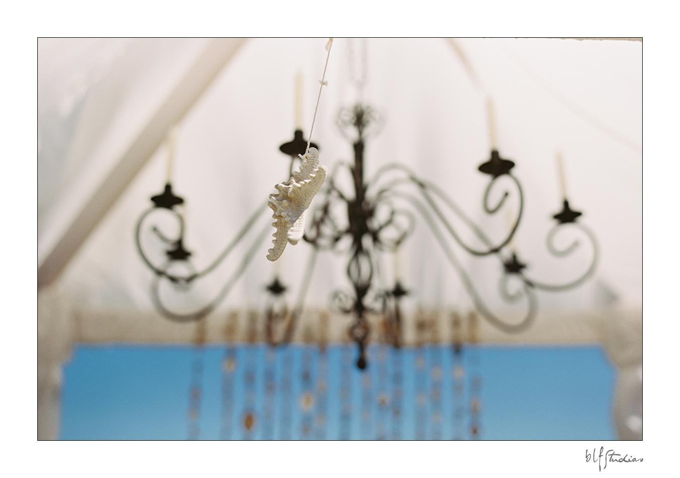 beach wedding details.jpg