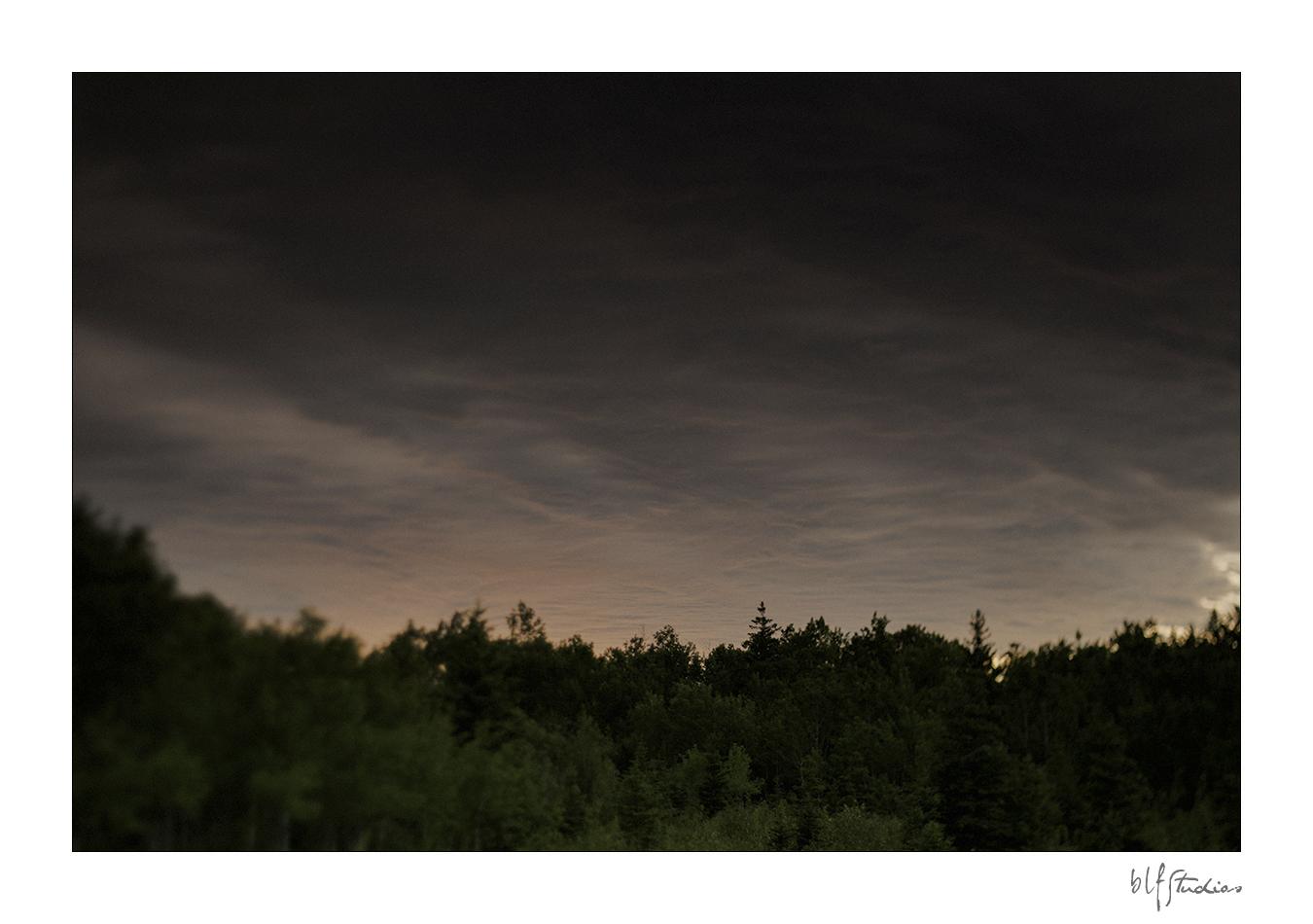 0009-blfstudios-birdshillpark-engagement-scott-casey.jpg