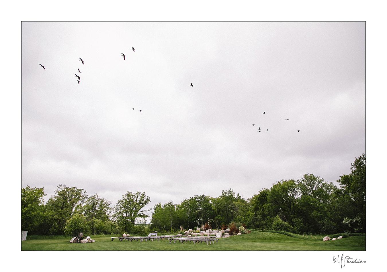0004-blfstudios-hawthornwedding-chelsea-chris.jpg