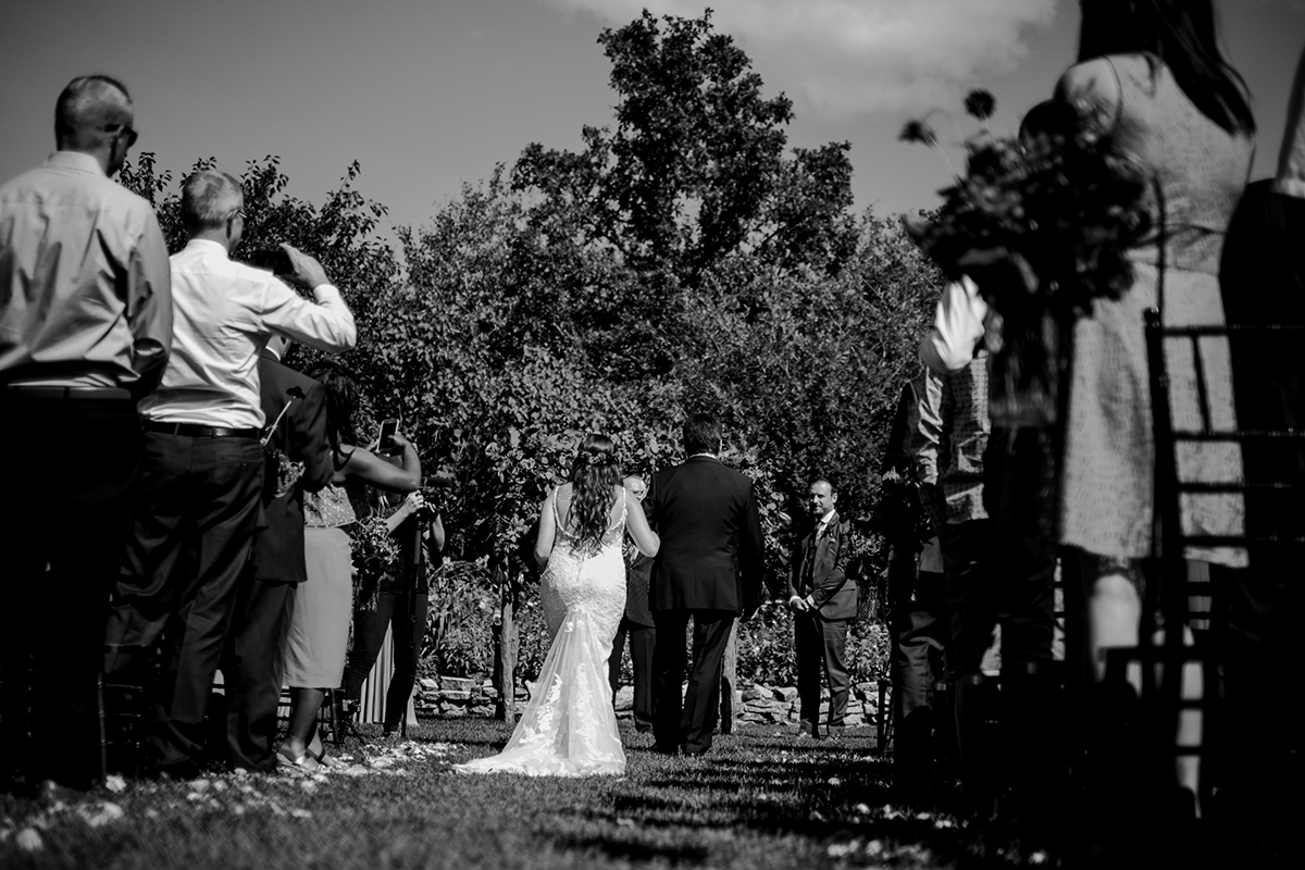 0017-birds-hill-park-pine-ridge-hollow-wedding.jpg