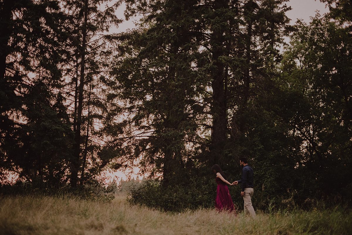 0010-elopement-photographer-manitoba.jpg