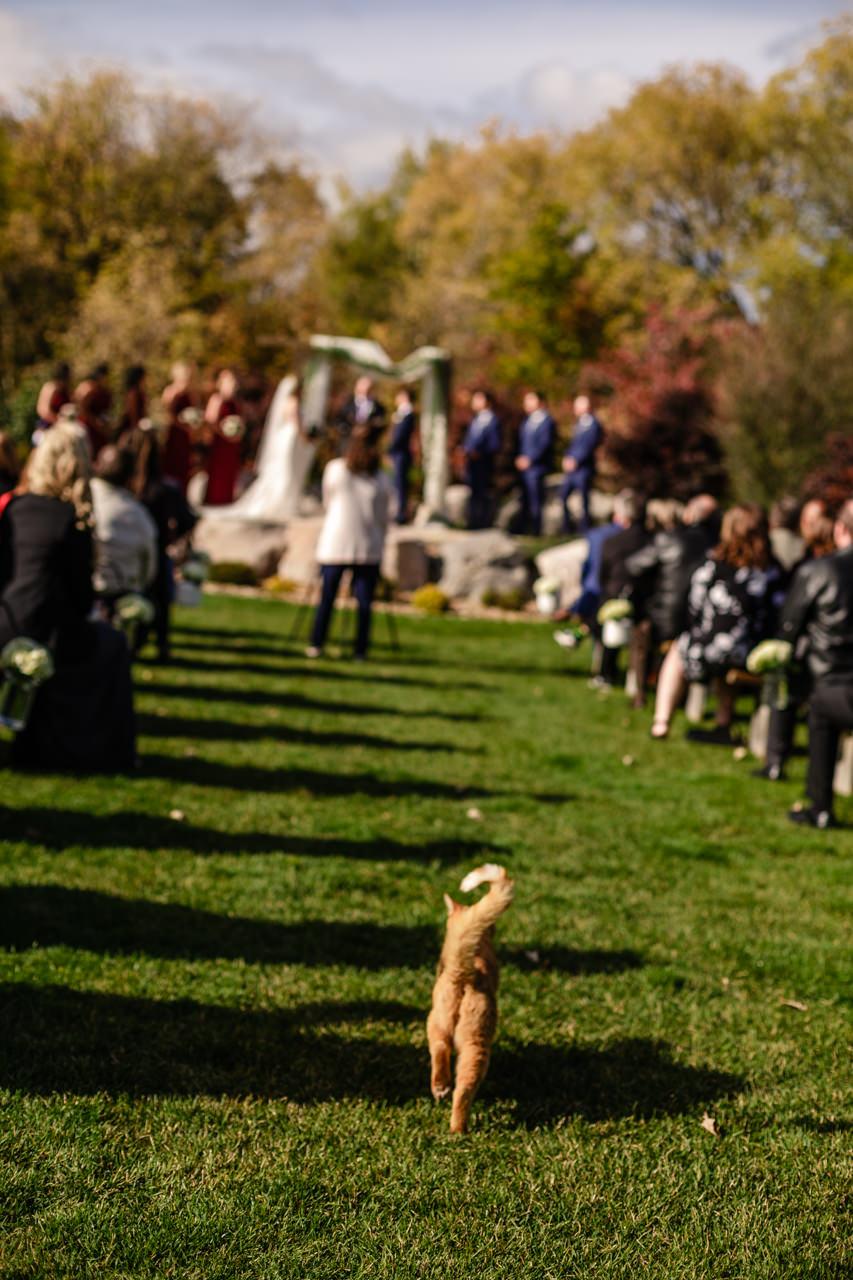 CarrieyAndCorey-Married-Wedding-HawthornEstatesWedding-WinnipegManitoba-CountryWedding-AutumnWedding-Fall-OutdoorWedding-blfStudios-Tony-016.jpg
