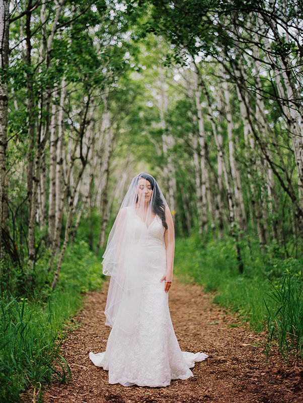 Cathedral veils and Summer wedding dress