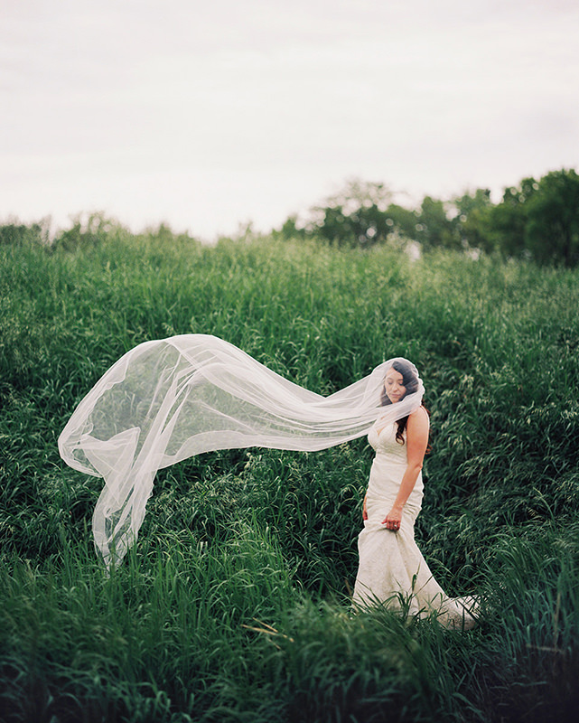 Cathedral veils Wedding Dress