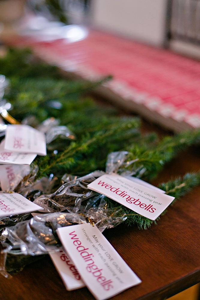 little fir trees for wedding gifts