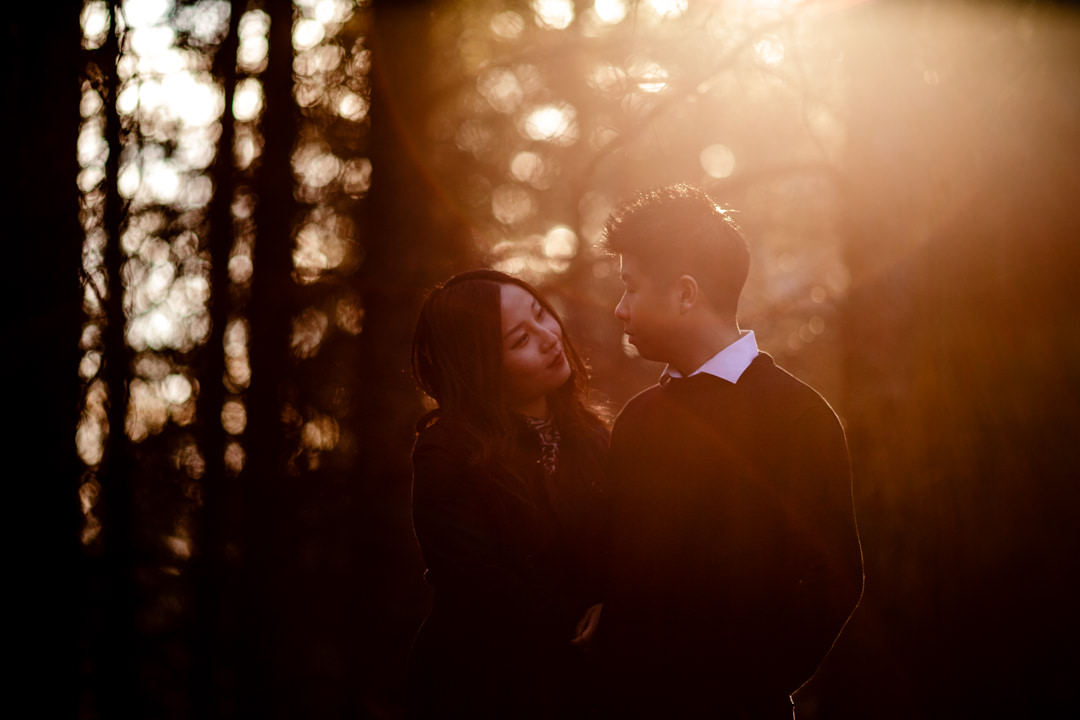 Anqi+Yi-PreWeddingShoot-chinesewedding-chinese-winnipeg-birdshillpark-blfstudios-tony-007.jpg