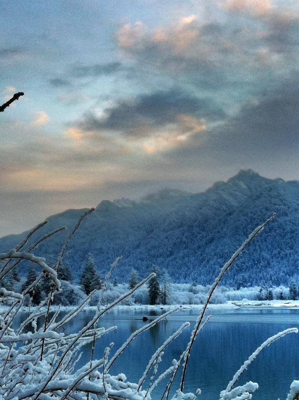 2012-01-15 2012-01-15 001 010.JPG