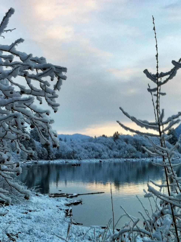 2012-01-15 2012-01-15 001 011.JPG