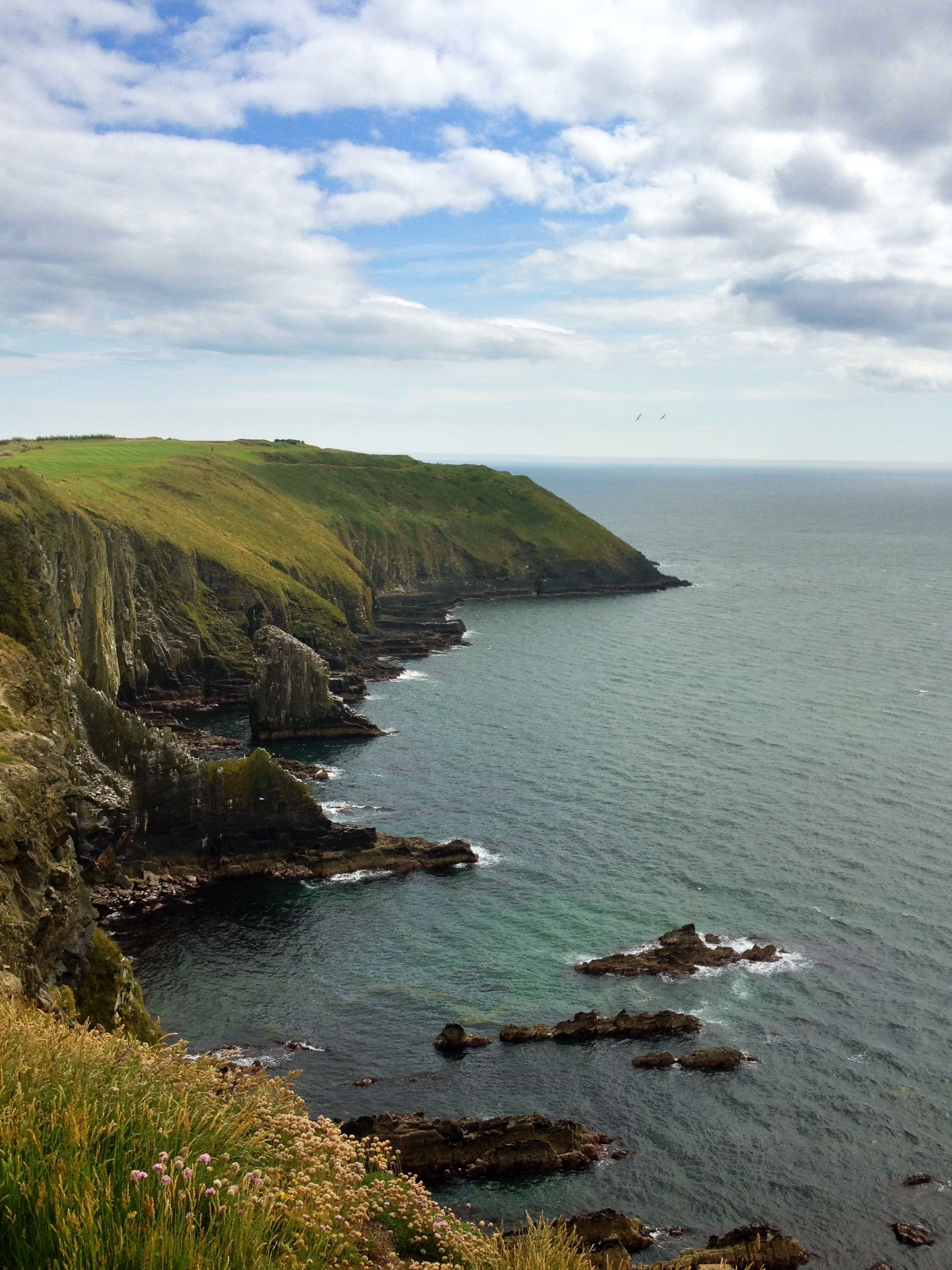 Old Head Cliffs, Kinsale Ireland