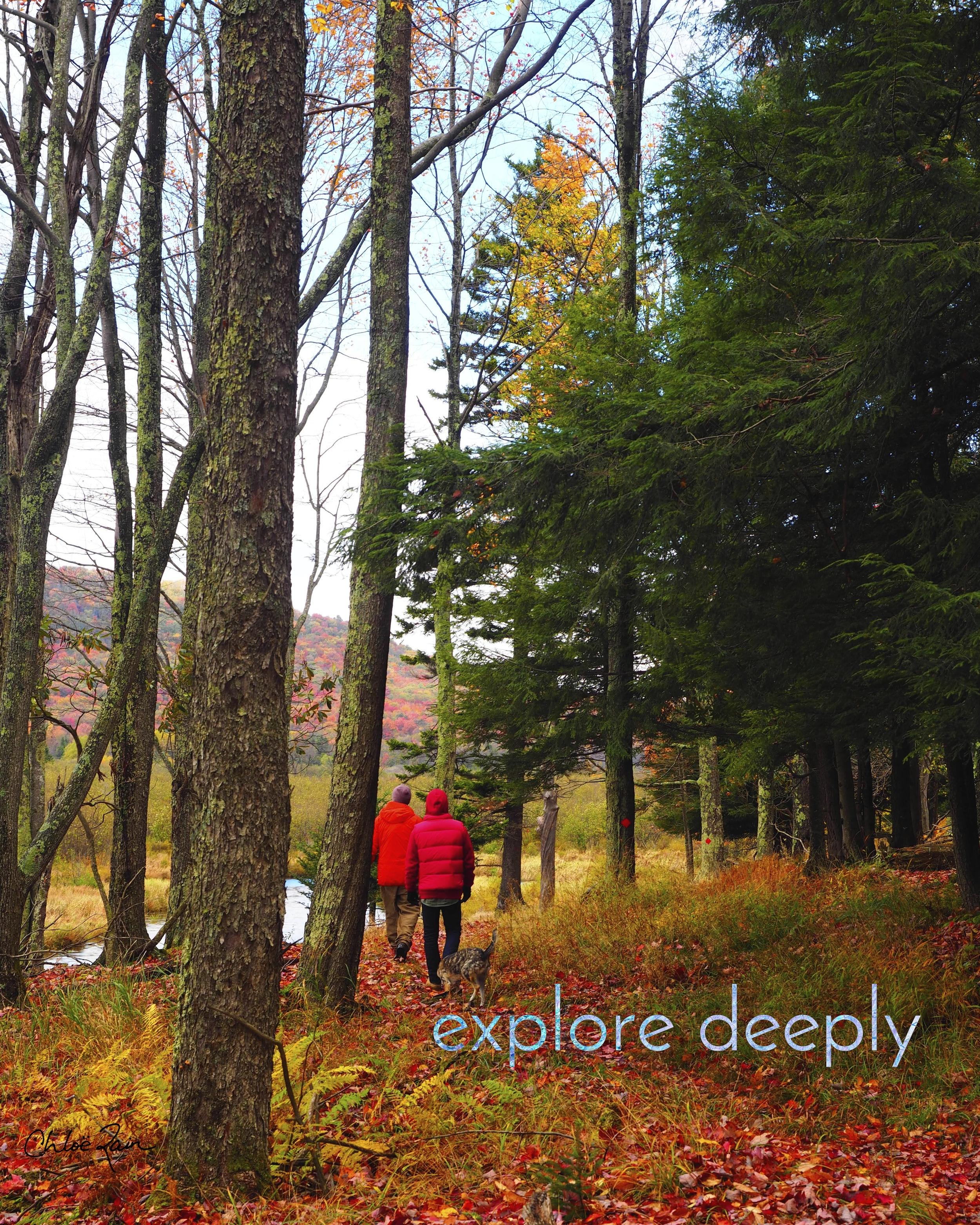 Explore DEEPLY