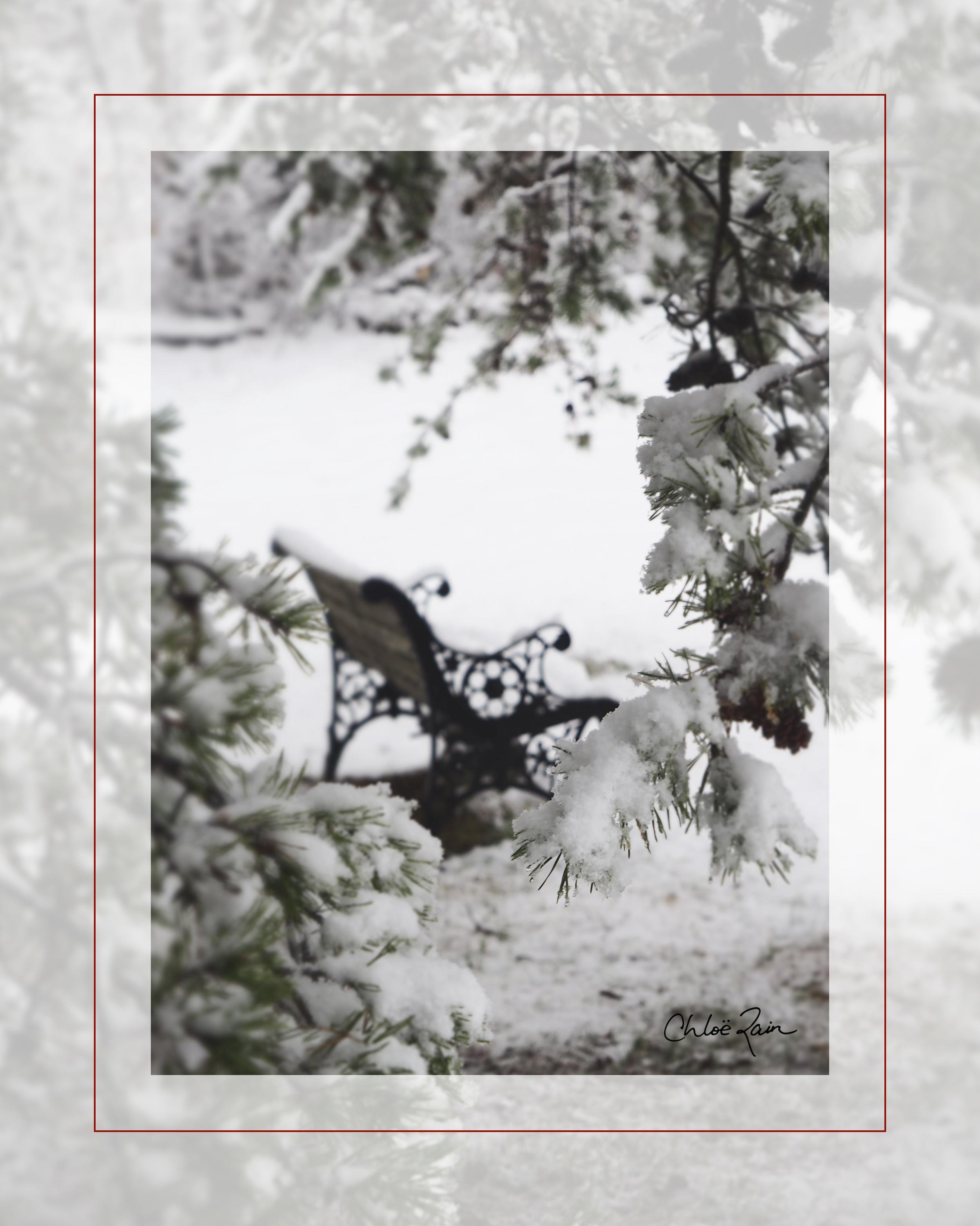 Peace & Snow