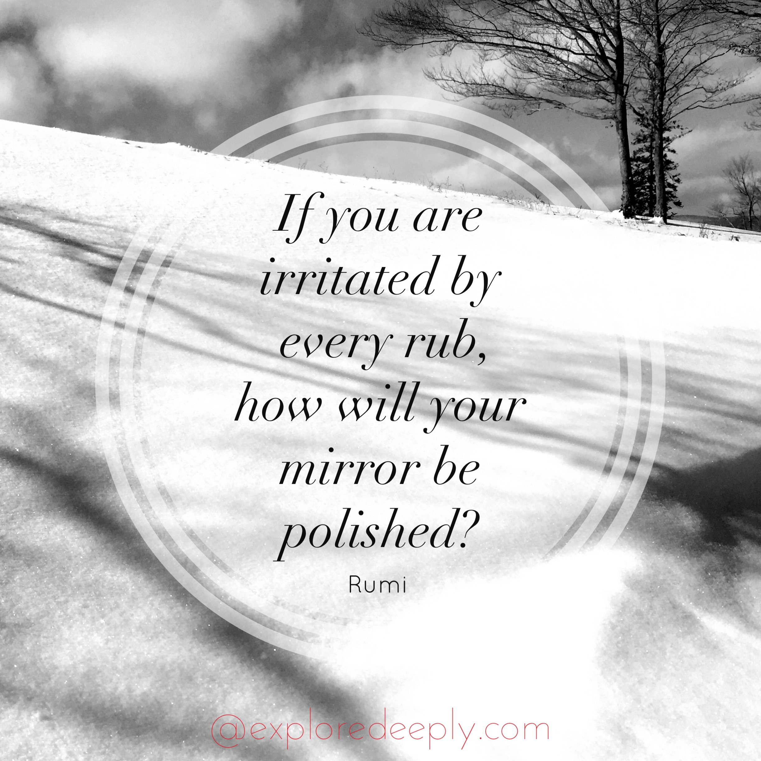 if you are irritated by every rub how will your mirror be polished rumi