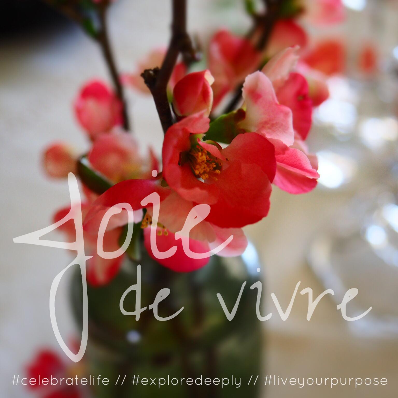 joie de vivre celebrate life explore deeply live your purpose