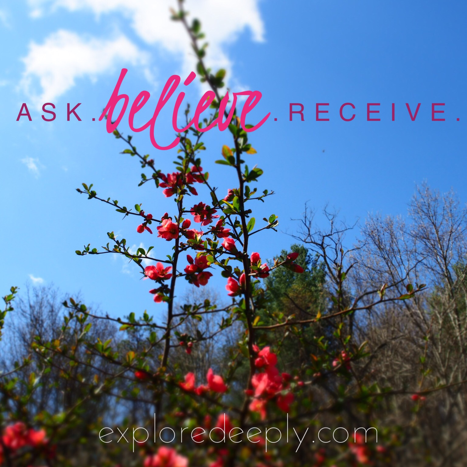 ask, believe, receive. explore deeply. law of attraction. chloe rain