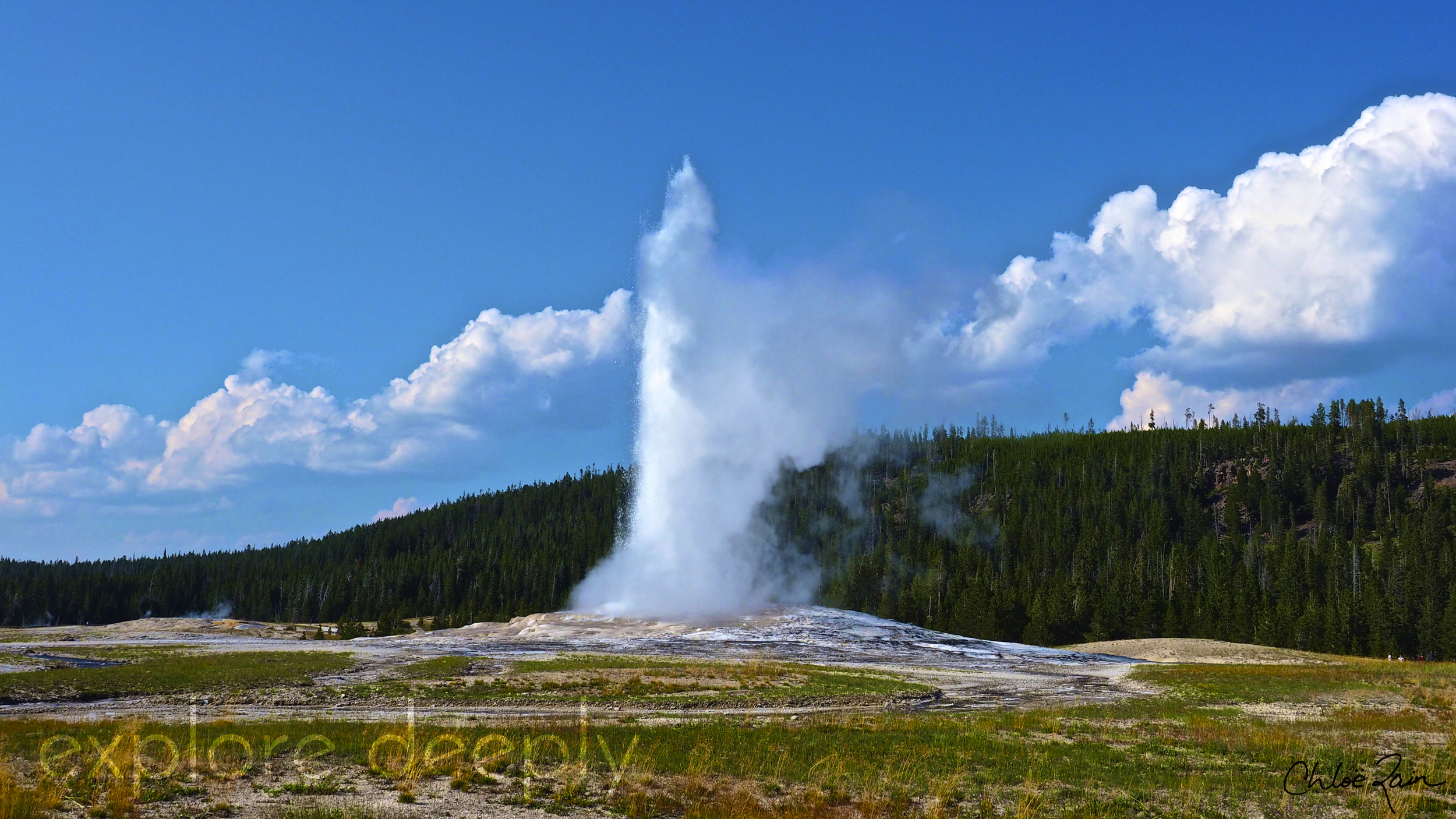 Old Faithful the famous geyser located in Wyoming, Yellowstone National Park.