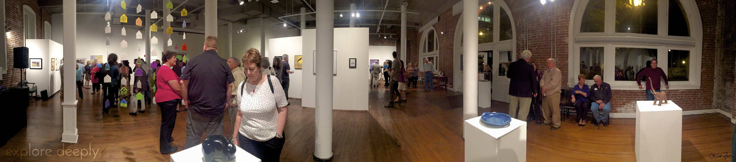 Riverviews Artspace Lynchburg Virginia 7th Annual Juried Art Show Gallery Opening
