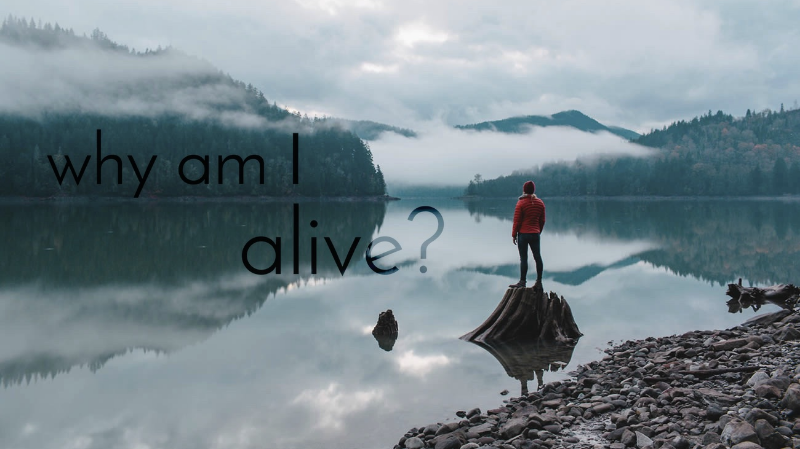 Why am I alive? To Explore Deeply My Reason for Existence