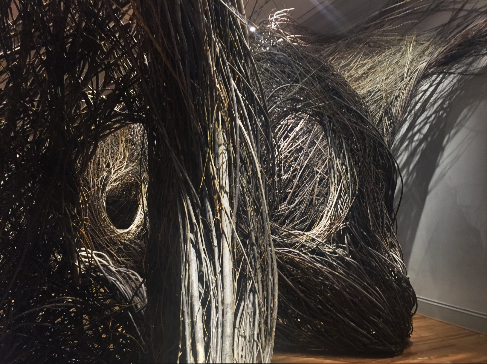 Renwick Gallery: WONDER: Opening Exhibit Patrick Dougherty