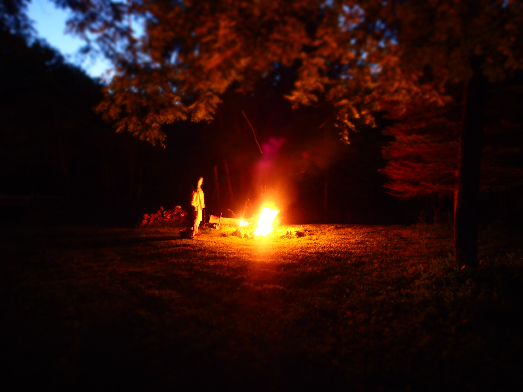 Another Full Moon Fire Ceremony, my mother tending the fire under the great Black Walnut Tree.