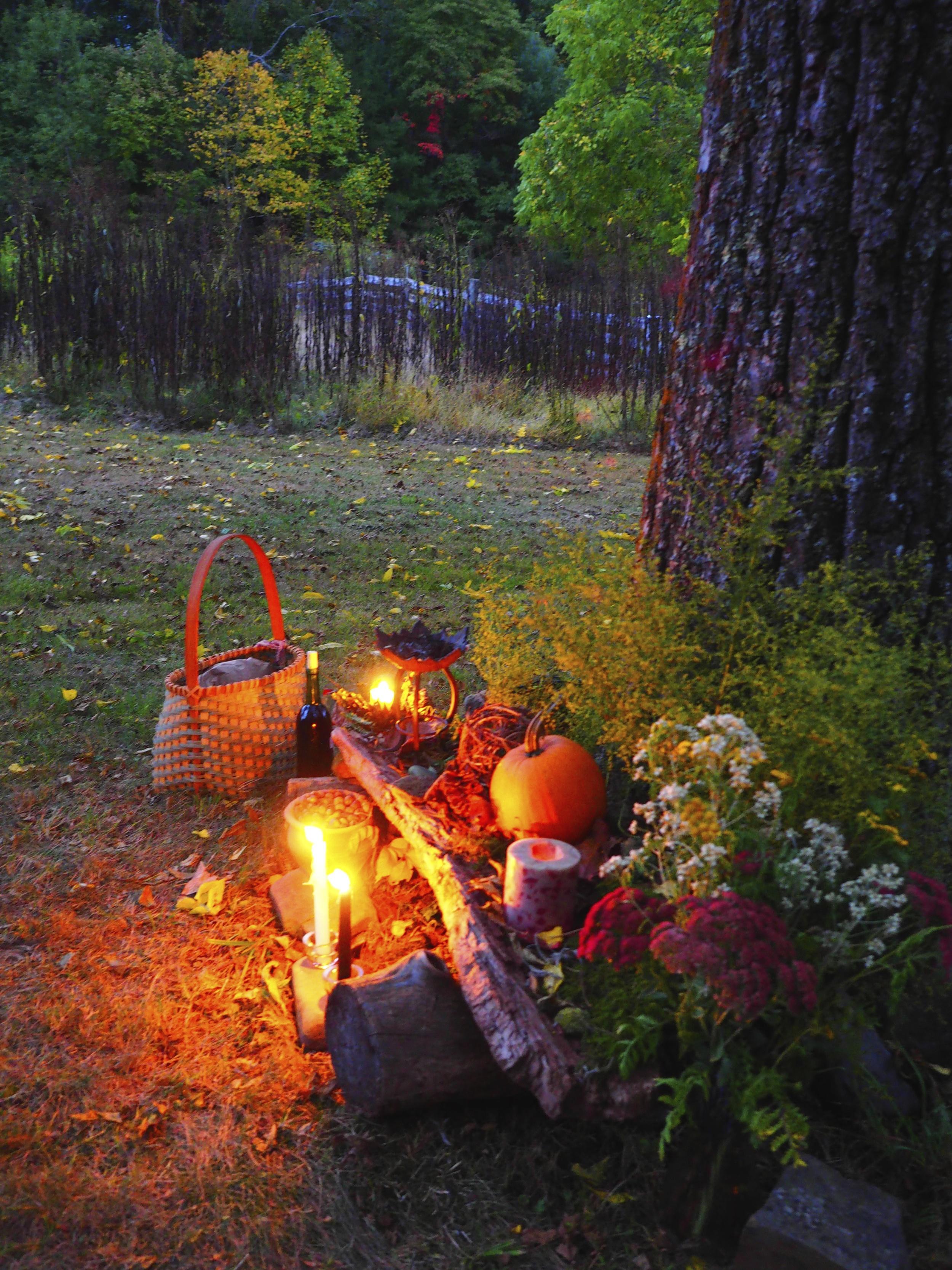 Offerings Under the Walnut Tree
