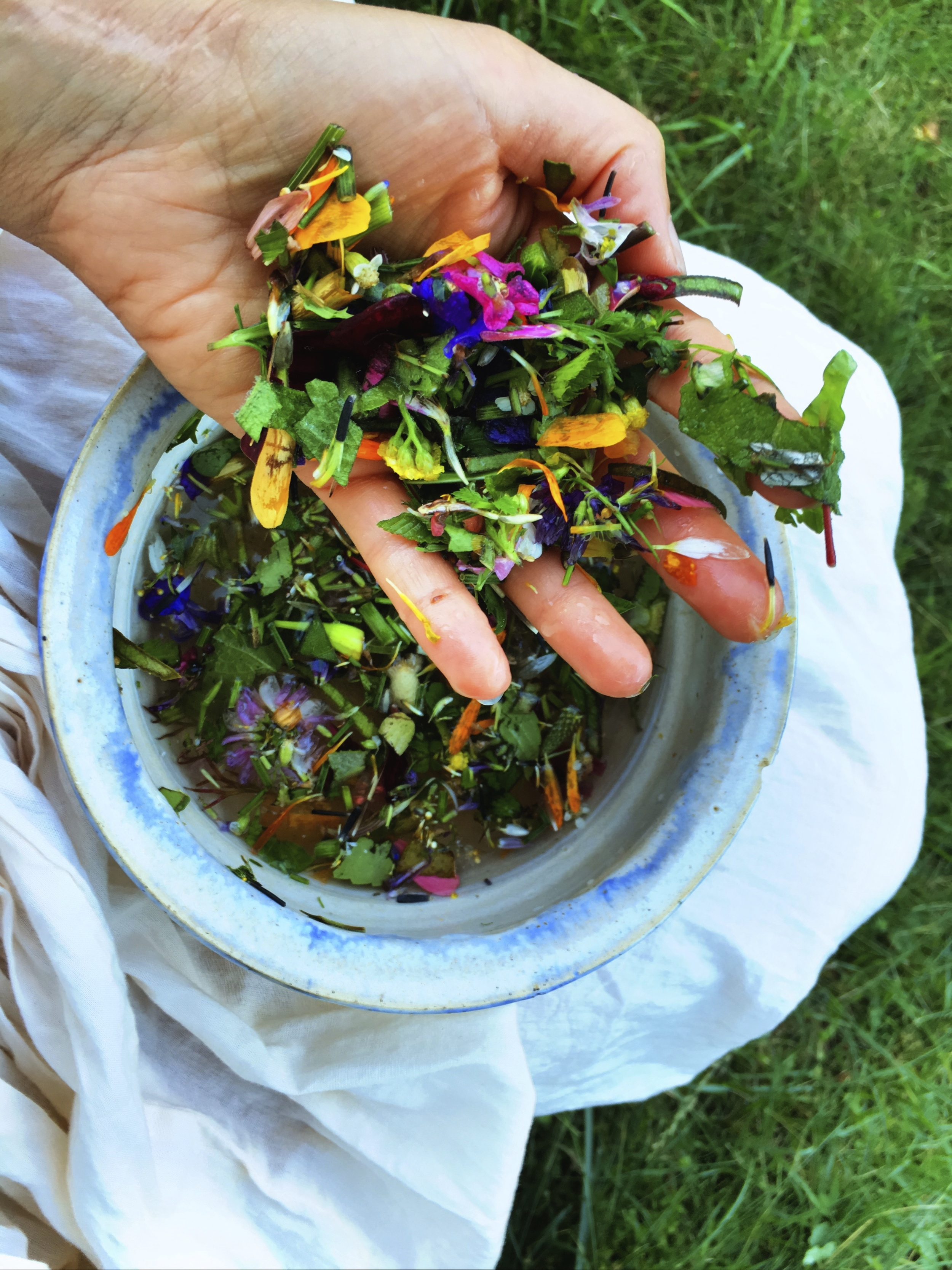 Wild Flowers gathered for Solstice Celebration