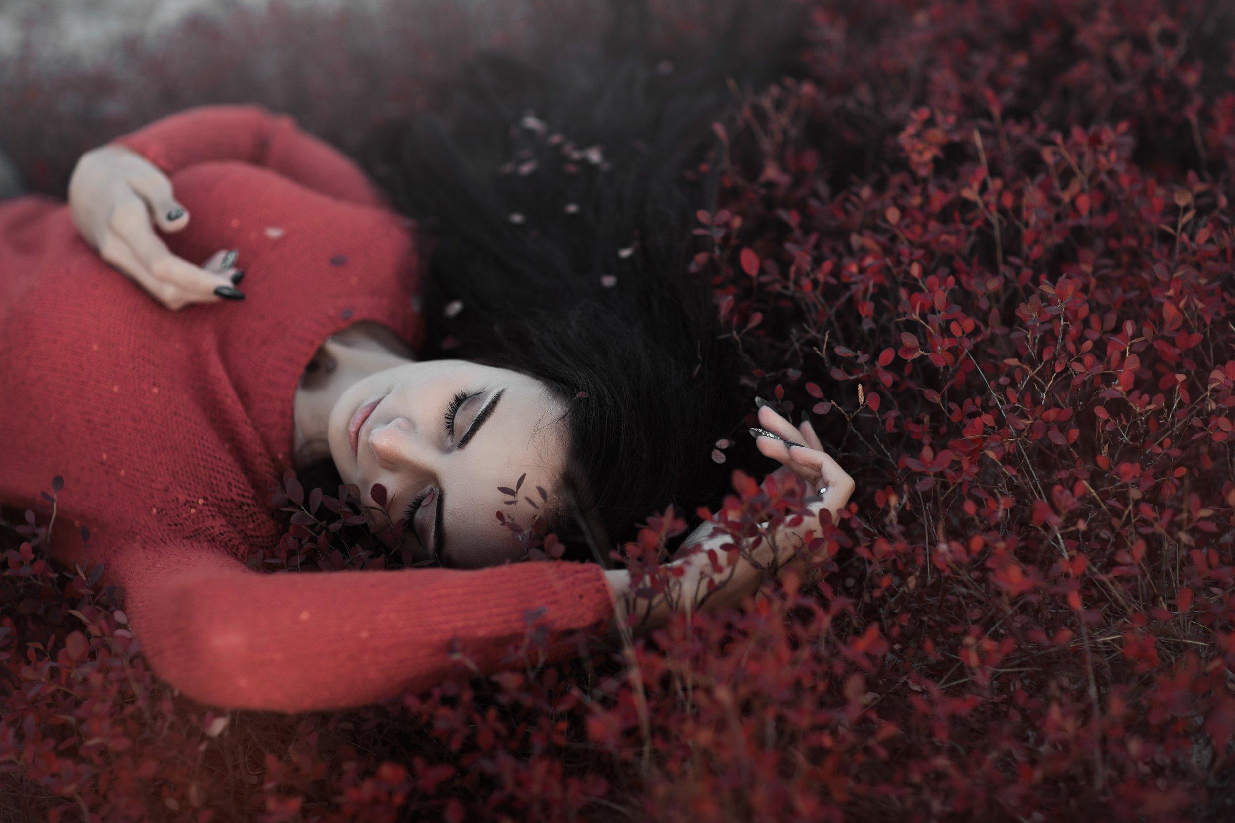 Holistic Healing Therapies : Soul Retrieval Emotional Healing