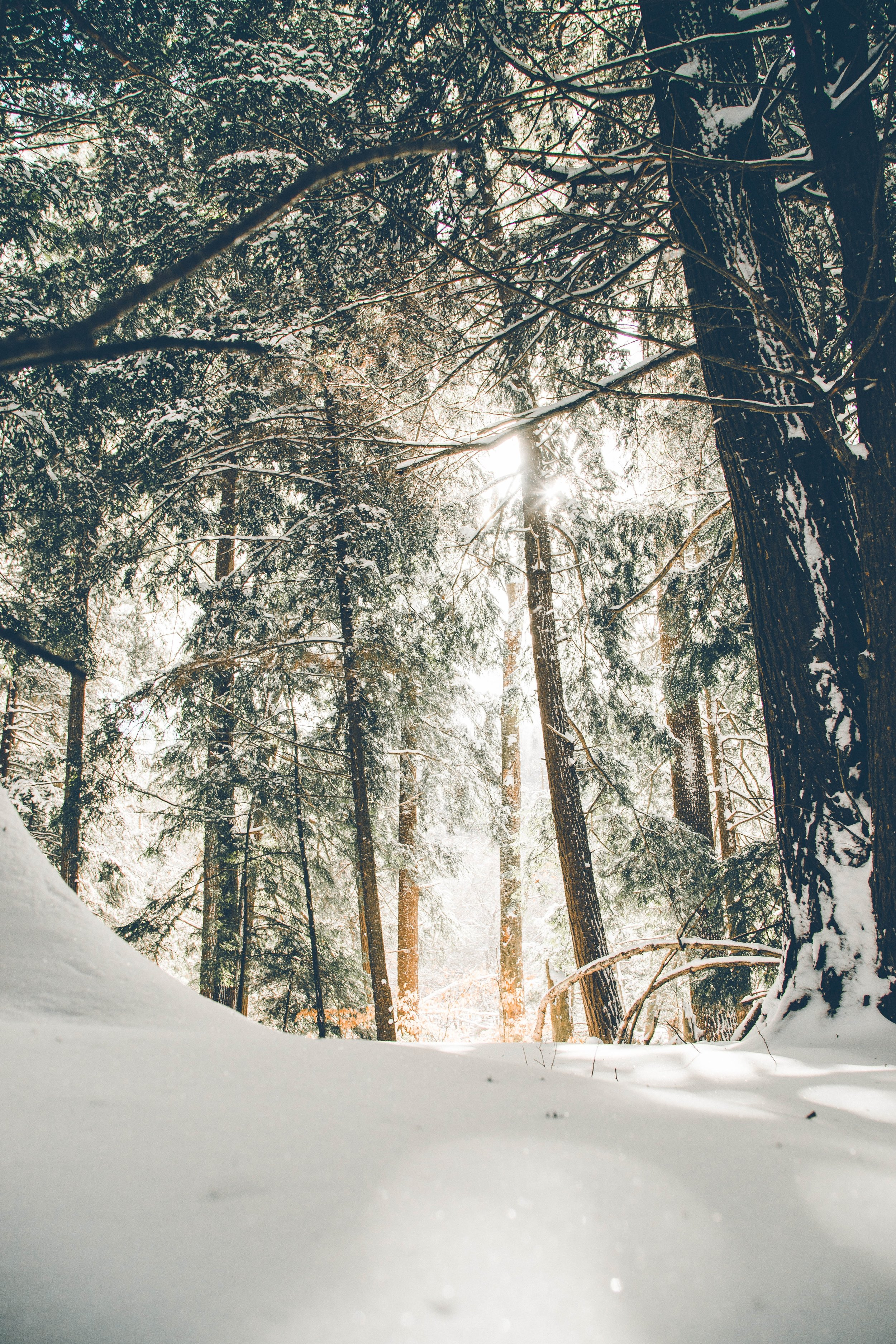 Meaning of Winter Solstice 2018