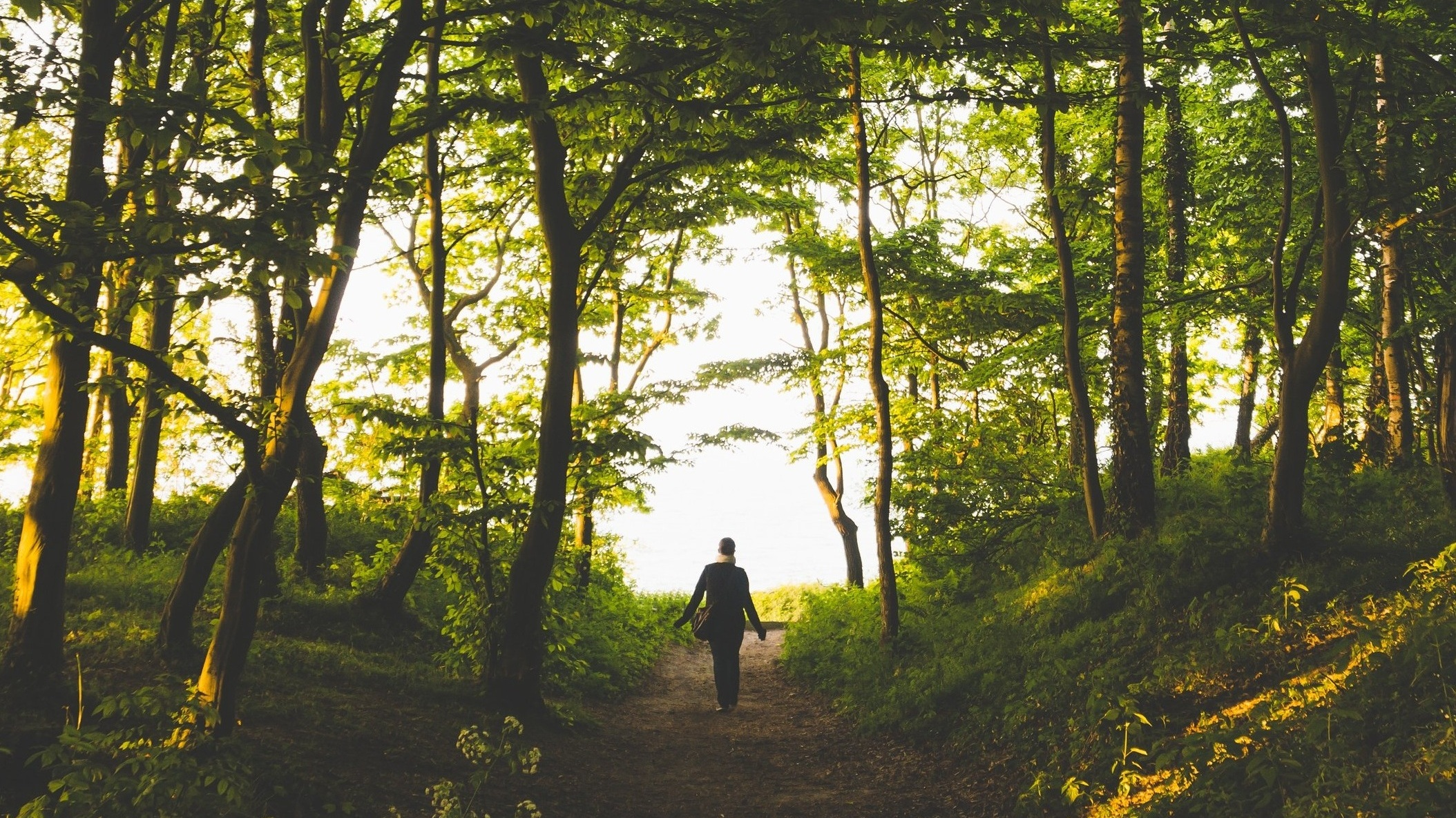 Walking the Path of Purpose Apprenticeship - Are you ready to go deep and discover your unique, soulful, intelligent, and meaningful place in the world? Discover your Soul Path through the wisdom of the Four Directions.In this 5 month in depth immersion program you will learn healing techniques that combine earth based wisdom with modern neuroscience and methodology. You will learn to listen to your internal compass in order to guide you on the path that is right for you.