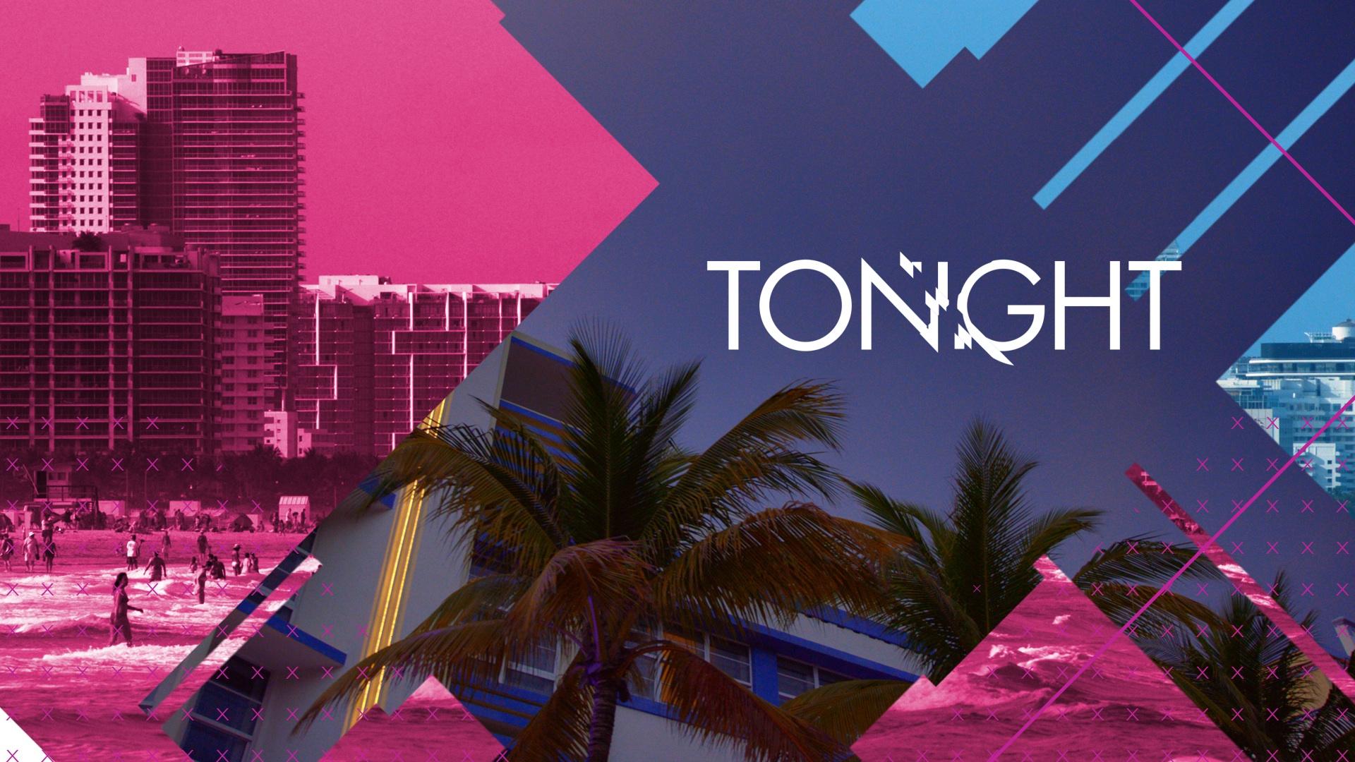 tv promo motion graphics | WAGS Miami tv promo toolkit