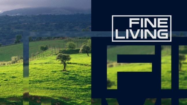 NETWORK BRAND - FINE LIVING