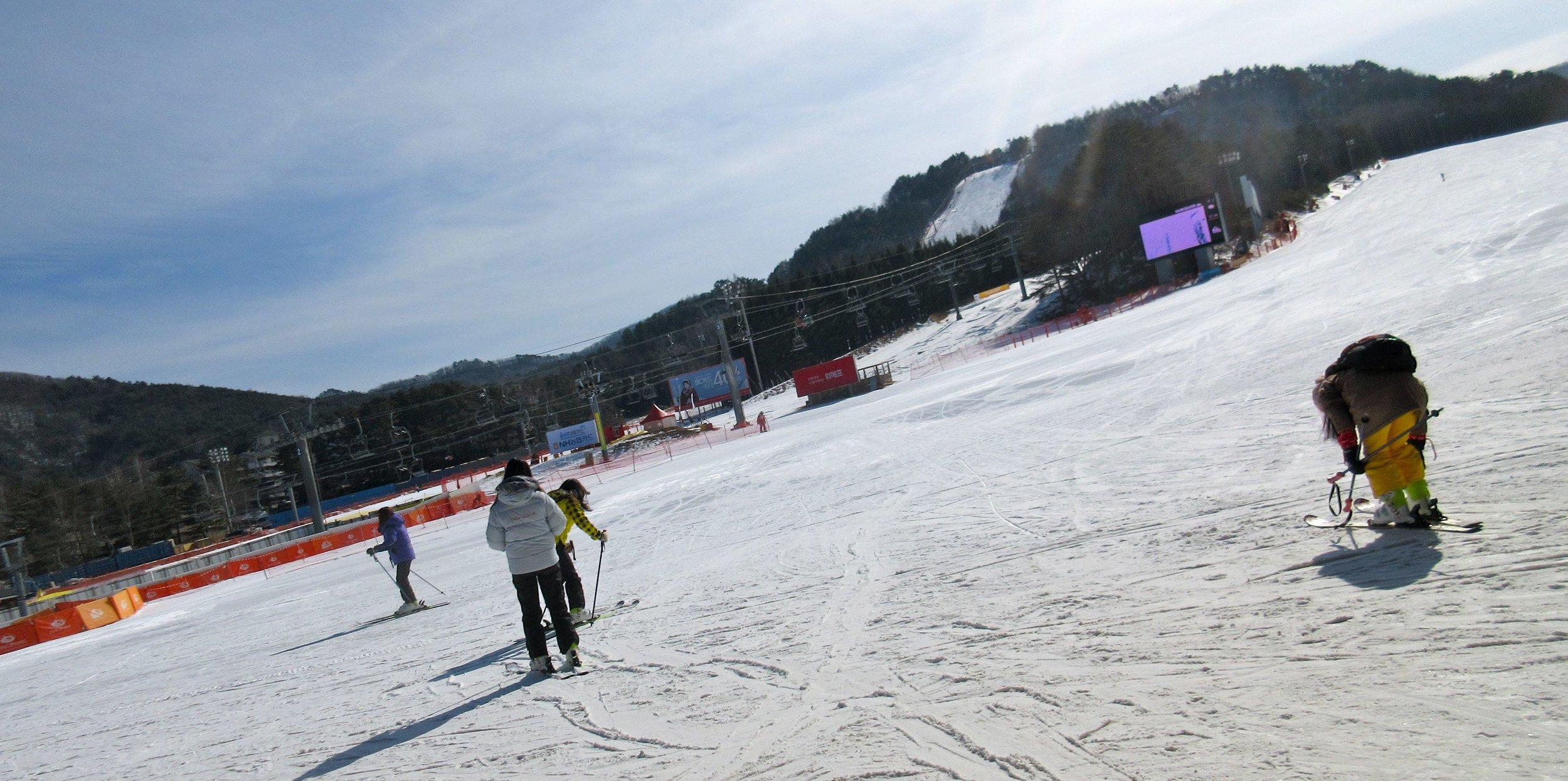 ski12.jpg